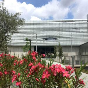 Jardin - Musée de la Romanité