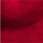 fragment rouge de la mosaïque