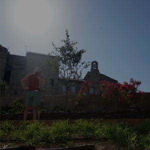 visiteur admirant des fleurs dans le jardin archéologique du musée